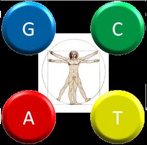 h-GCAT logo