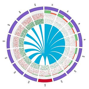 computational biology circos vizbi