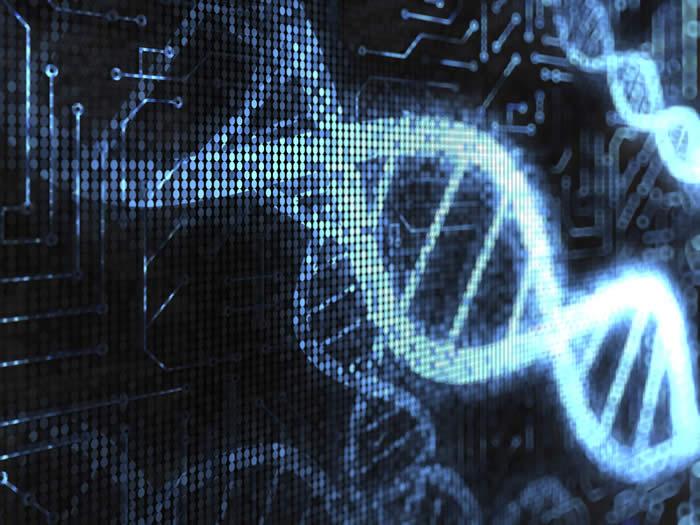 Computational Biology & Bioinformatics