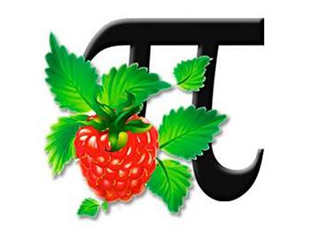 The Raspberry Pi Guy logo