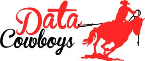 Data Cowboys logo reddish orange word Data in cursive over black cursive word cowboys, reddish orange riding cowboy is roping the word data with a black rope