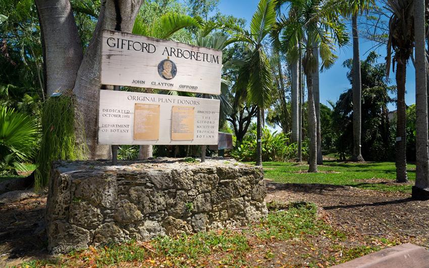 Gifford Arboretum